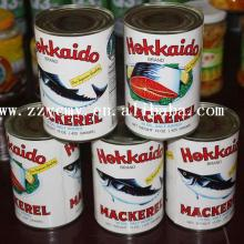 Food distributors fish food canned sardine in tomato sauce