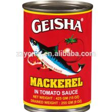 canned geisha mackerel fish in tomato sauce