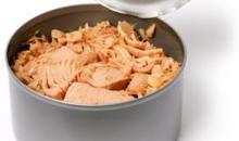 Albacore canned Tuna in Oil