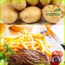 certified fresh dutch sweet potato 150-200g price for export