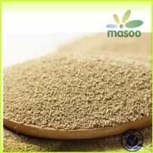 Torula Yeast/ Autolyzed Yeast Extract/ Yeast Nutrient