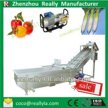 Bubble Vegetable and fruit  cleaning  machine processing line