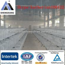 chicken  layer cage mesh//poultry  chicken s  farms  for sale/chick cage/poultry farming for egg laying b