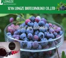 Natural bilberry Blueberry bilberry extract 25% anthocyanins
