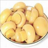 Canned Mushrooms High Quality