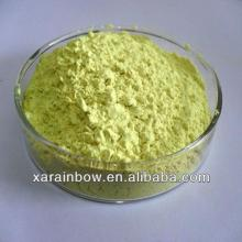 95% Rutin   NF11  Extracts from sophora japonica