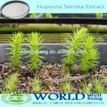 Factory Supply 1%5%10%Huperzine A  Huperzia   Serrata  Extract/ Huperzia  Extract/ Huperzia   Serrata  Extract