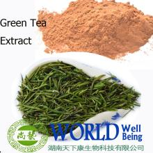 Organic green tea anti-cancer , losing weight extract powder Green Tea Polyphenols 95%