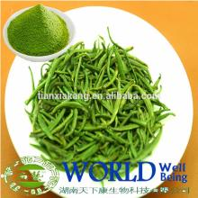 China Manufacturer Organic Low Price Instant Matcha Green Tea Powder/Green Tea Powder/Tea Powder