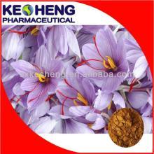 Saffron Extract Powder/Crocus sativus L.