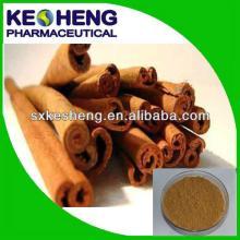 100% Natutal Cinnamon Bark Extract (Cortex Cinnamomi Cassiae)