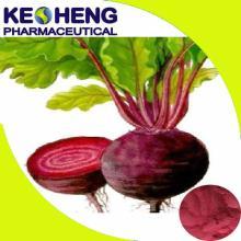 High quality Beet root sugar/Sugar beet powder