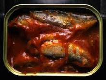 Canned sardine in tomato sauce (competitive price)