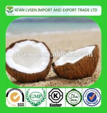 High Quality High Fat Desiccated Coconut Powder