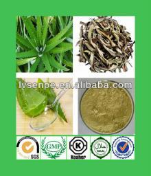 GMP supplier high quality aloe vera extraction machine, CAS  no:1415-73-2aloe  b ar b adensis leaf ,aloe  b