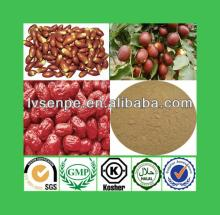 Best selling for 100% natural jujube chinese date extract jujube extract
