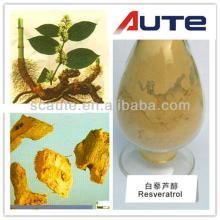 Herbal Extract Resveratrol Powder Capsule
