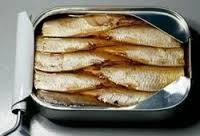 Best good taste canned sardine fish in oil 125g cheap price