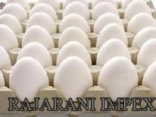 Indian Export & Supply of Farm Fresh Chicken eggs