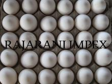 Export & supply of Farm Fresh Indian White shell chicken Eggs