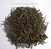 Green tea stem