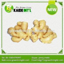 Organic Fresh Vegetable Ginger