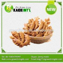 Ginger Product Manufacturers Product