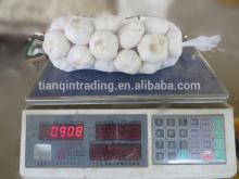 White Garlic in 1kg/bag, 10kg/carton