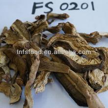 Dried Boletus porcini mushroom cap