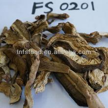 Dried Boletus porcini mushroom