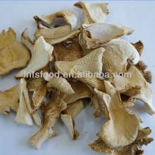 Dried  oyster   mushroom , pleurotus