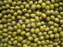 High qualtiy Green Mung Bean,2014 crop,different size
