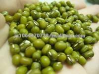 Green nungs beans for sale