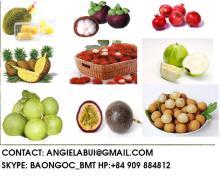 Fresh frozen Pomelo, gauva, dragon fruit, banana, litchi, mango, mangoteen, rambutan, durian