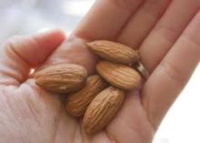 high quality almond nuts