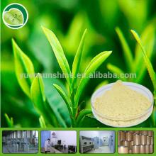 100% Organic Matcha Green Tea Powder