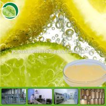 Instant Lemon Tea Powder / Lemon Powder / Lemon Flavor Powder