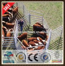high quality galvanized cattle yard panel for sale