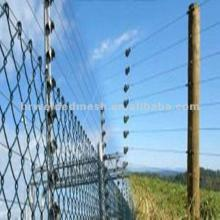 security electric cattle fence
