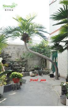 SJ Outdoor&Indoor artificial/Fake coconut trees