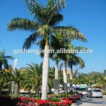 SJZZY artificial decorative large treee ,outdoor use artificial coconut tree