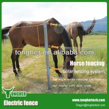 Dual input 12V battery powered horse  electric   fence  pastor,farm tool for  electric   fence