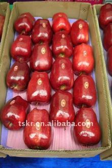 GOOD organic fresh huaniu apple
