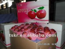 apple wholesale red apple fruit price