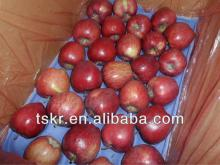 wholesale fruit prices red huaniu apple from china
