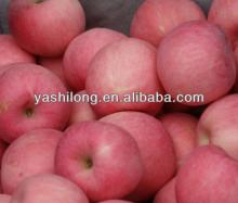 Star Apple Fruit In Chinese