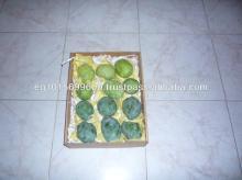 Fresh kent Mango