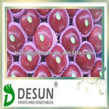 sweet red Tianshui  vitamins  and  minerals  fresh huaniu apple