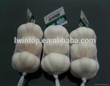 chinese fresh garlic , white fresh garlic, pure white garlic