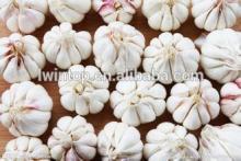 6.0cm Chinese jinxiang  garlic  2014 crop  pure  white  skin